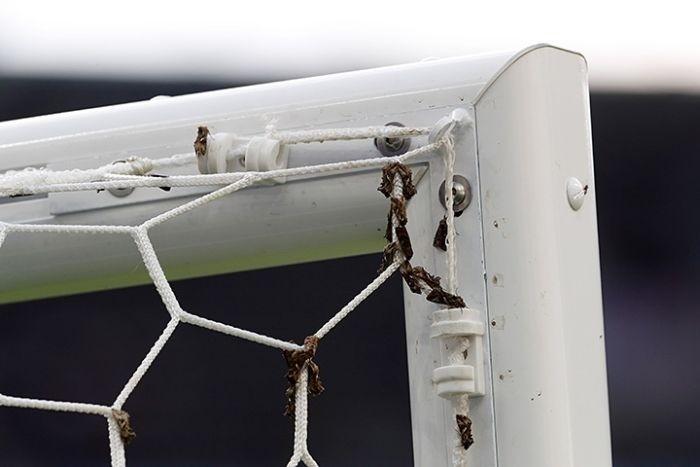Мотыльки на стадионе «Стад де Франс» во время финала Евро-2016