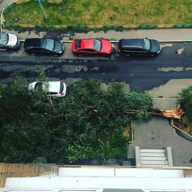 На Москву обрушилась сильнейшая за последние 28 лет гроза