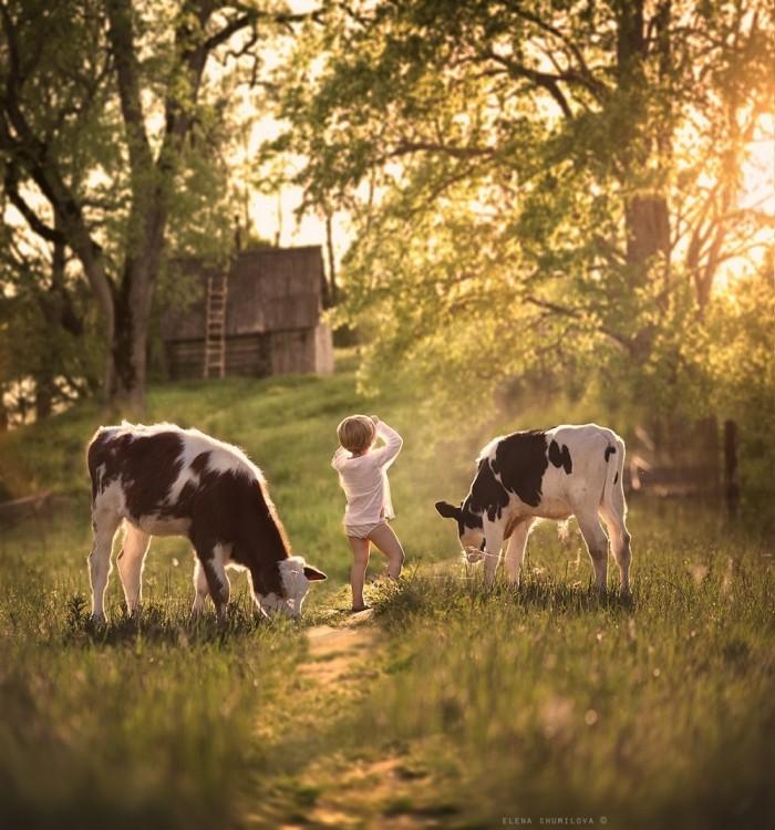 Душевные снимки о детстве в деревне