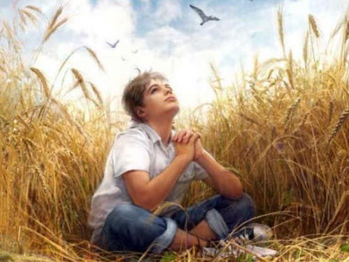 «Над пропастью во ржи» – библия американской молодежи или любимая книга убийц?