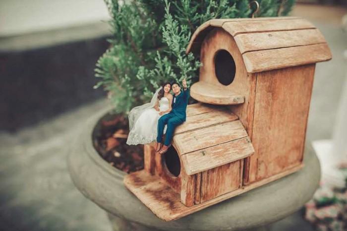 Свадебный фотограф превращает пары в миниатюрных людей