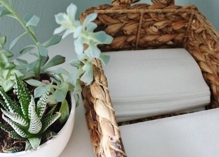 Пять лучших народных средств от комаров