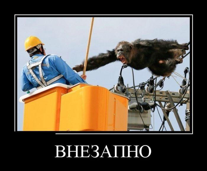 Демотиваторы (30 фото) 25.07.2016