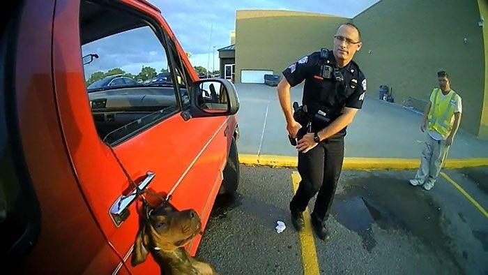Полицейские спасли щенка, повисшего на поводке на дверце машины