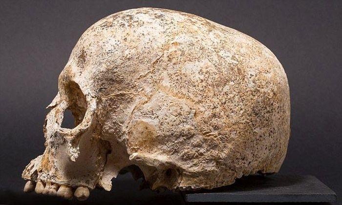 Ученные создали модель головы девушки, умершей 3700 лет назад