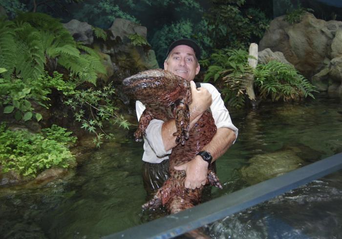 Фото самых больших животных (24 фото)