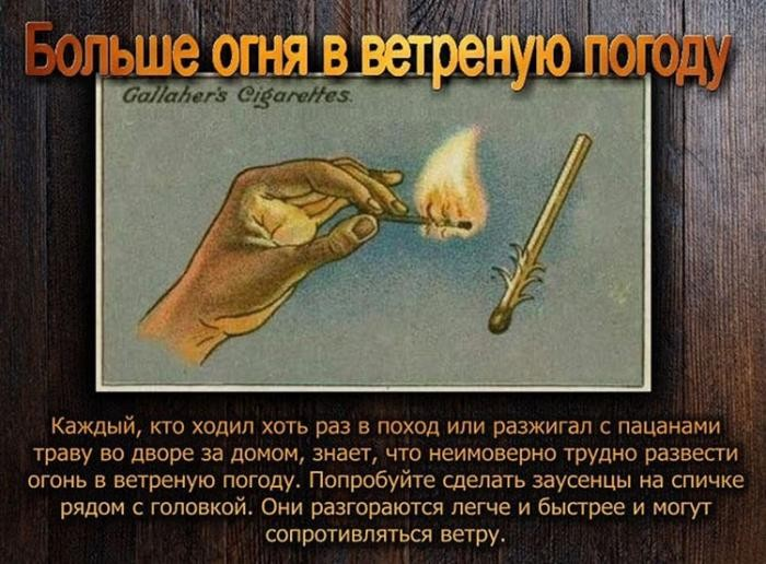 Наши предки, в отличие от нас, курили с пользой (11 фото)