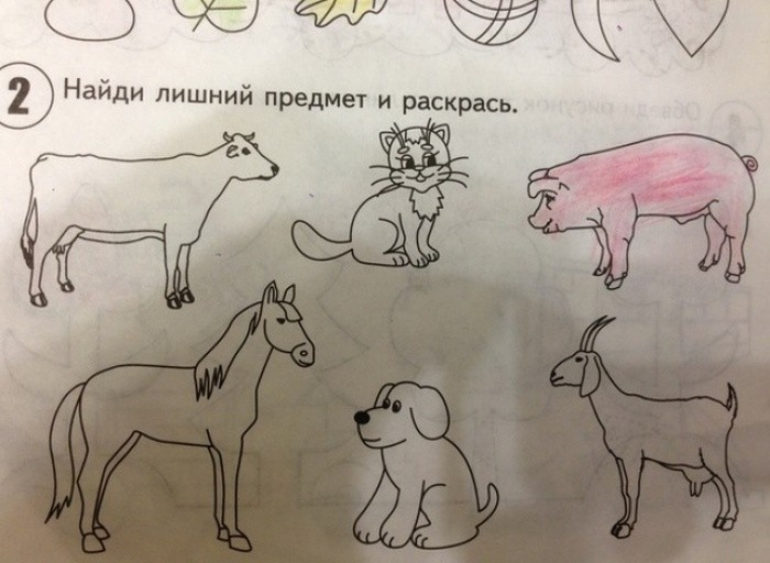 Обычные задачки из учебников современных школьников (24 фото)