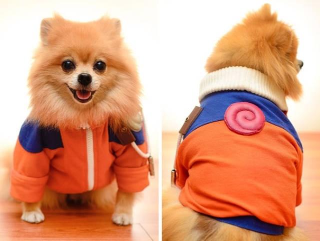 Забавные костюмы собак для Хэллоуина
