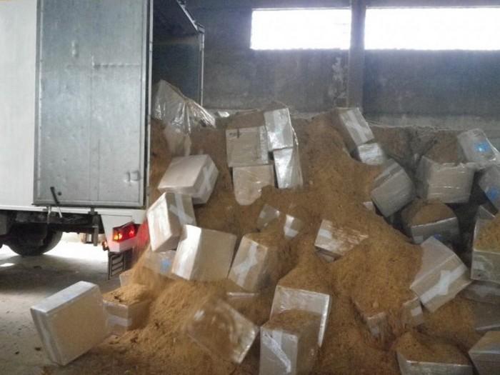 Контрабандисты спрятали сигары в очень неожиданном месте (16 фото)