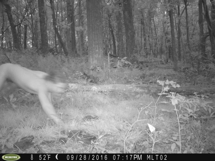 Камеры наблюдения за животными сделали странные снимки