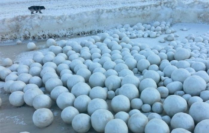 Ледяные шары на берегу Оби