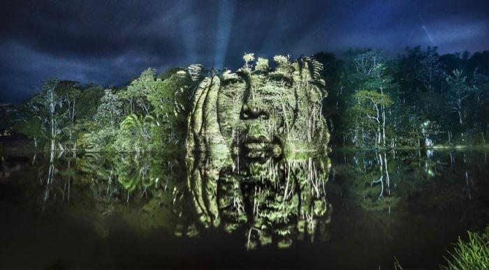 «Световые граффити» в тропическом лесу