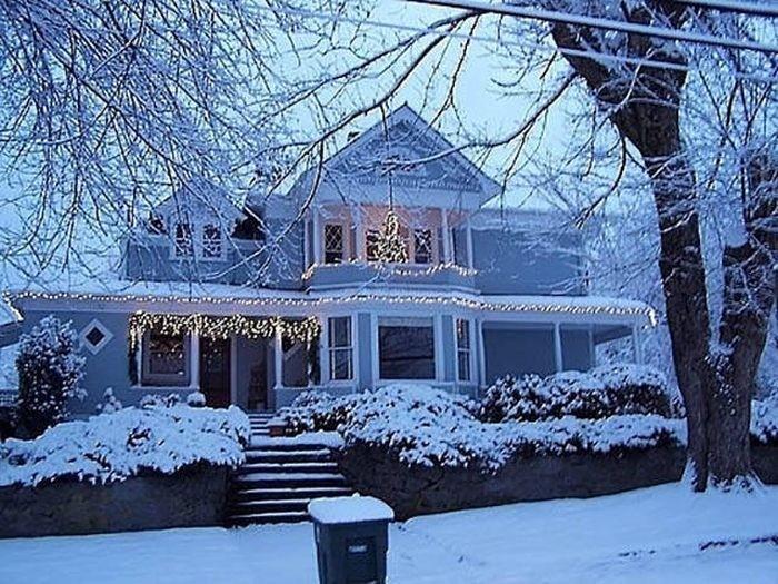 Красивые и забавные зимние фото