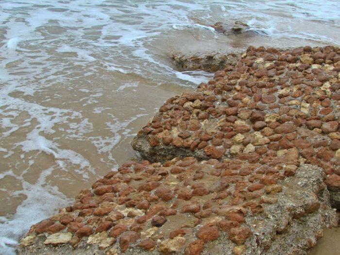 Что можно найти на берегу после шторма (14 фото)