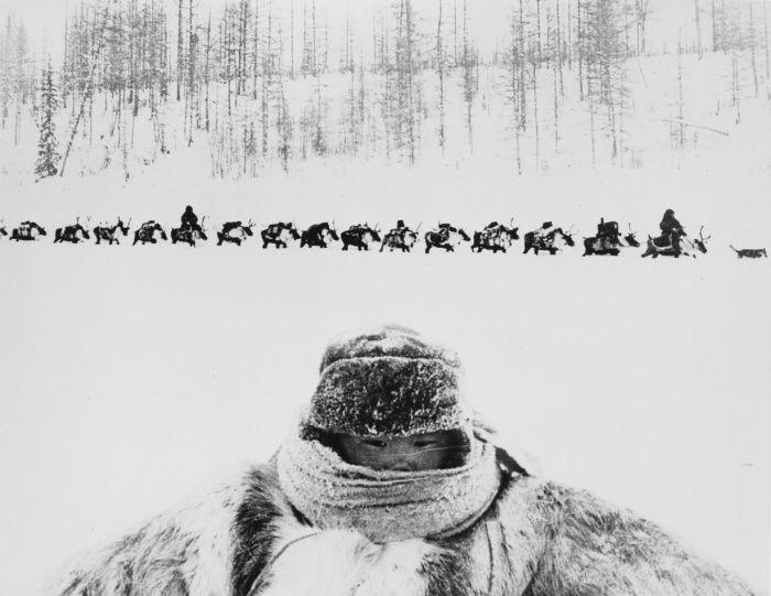 Подборка редких фотографий со всего мира (15 фото)