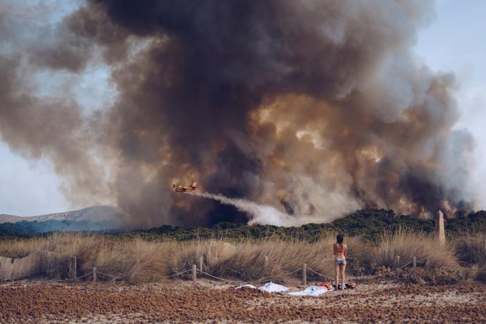 National Geographic: лучший фотограф природы 2016 (17 фото)