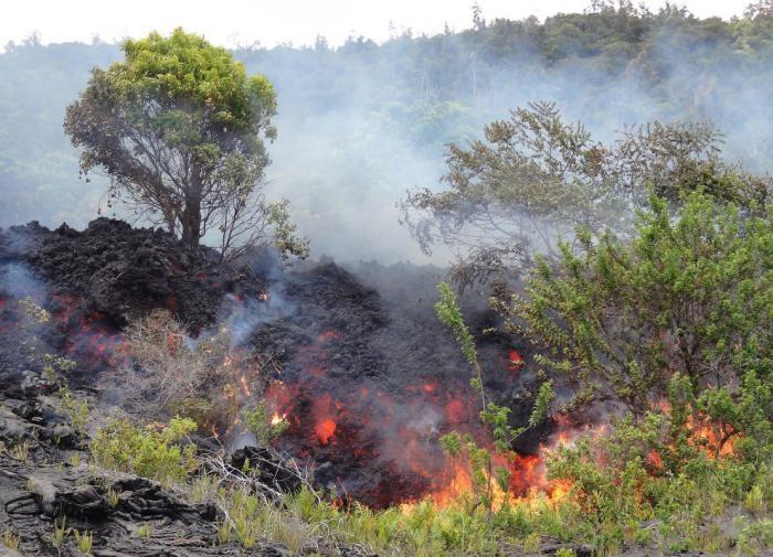 Извержения вулканов в 2016 году (17 фото)