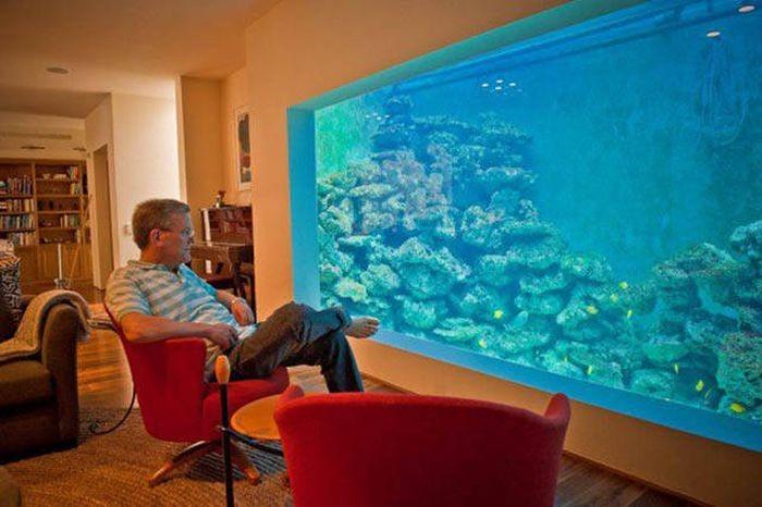 Израильтянин создал самый большой в стране аквариум для гостиной (12 фото)