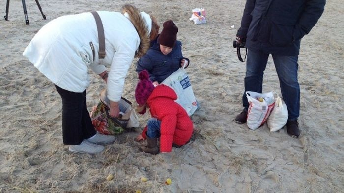 Побережье немецкого острова Лангеоог засыпало «киндер-сюрпризами»