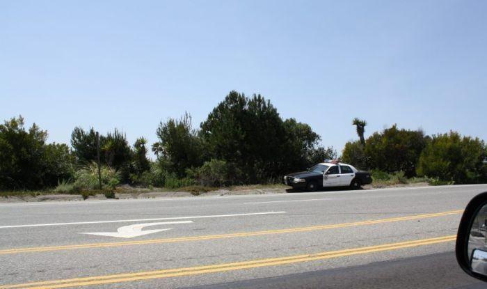 Полицейская уловка (8 фото)