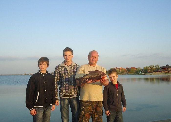 Пиранья в Ростове (4 фото)