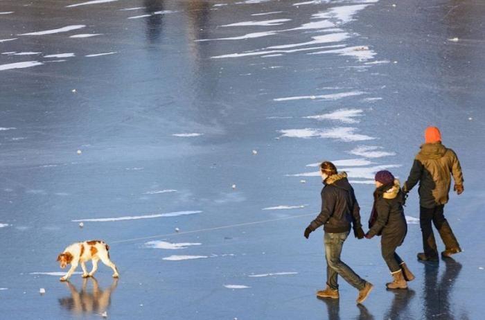 Дунай замерз второй раз за 30 лет (4 фото)