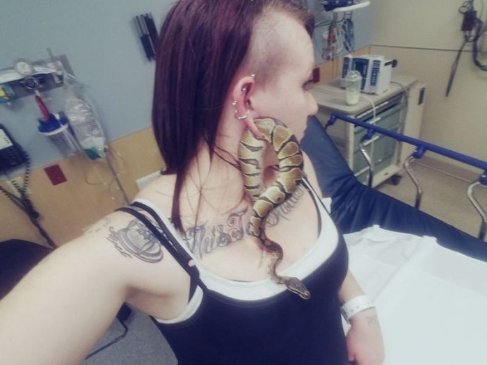 Змея застряла в ухе своей хозяйки