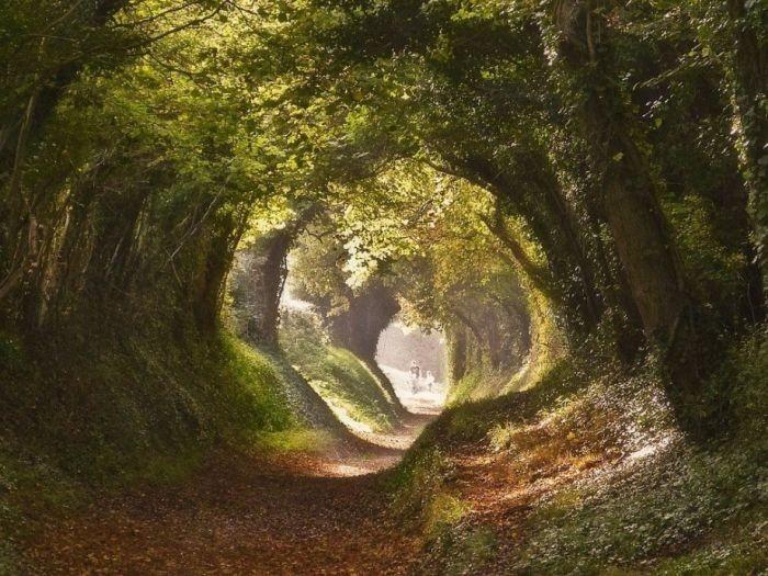 Ушедшие под землю старые дороги Европы (8 фото)