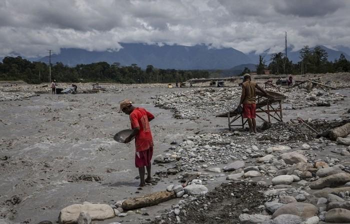 Золотая лихорадка Западного Папуа уничтожает природу