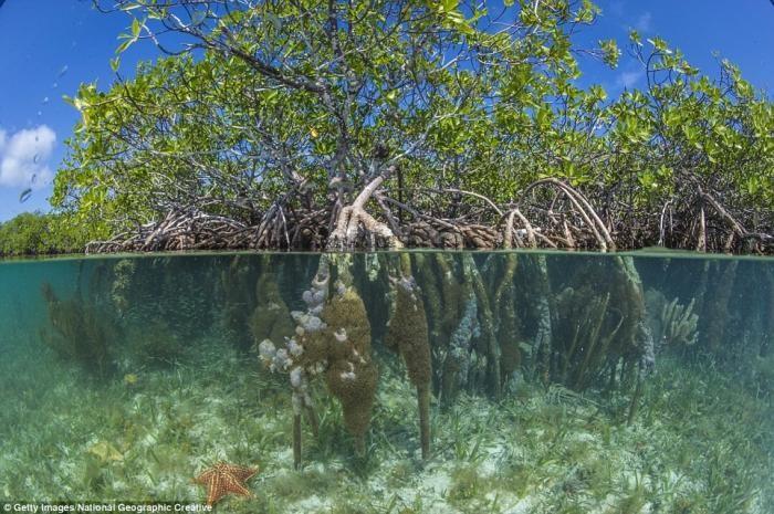 Лучшие пляжи мира по мнению National Geographic