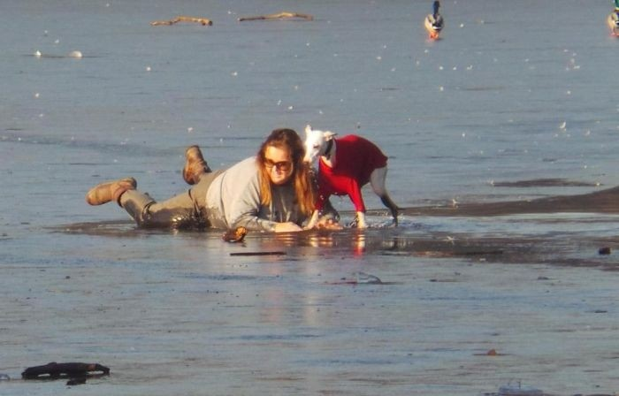 Спасение провалившейся под лед собаки