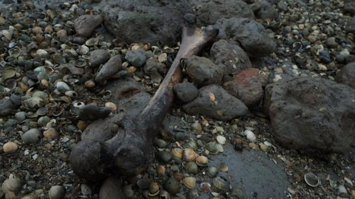 Остров мертвеца