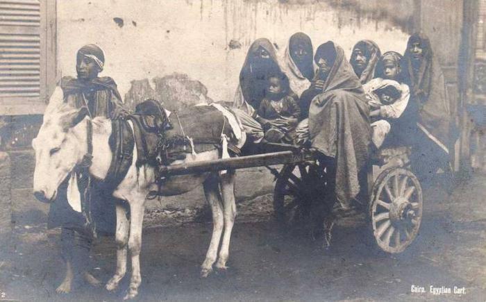 Египет на старых фотографиях (38 фото)