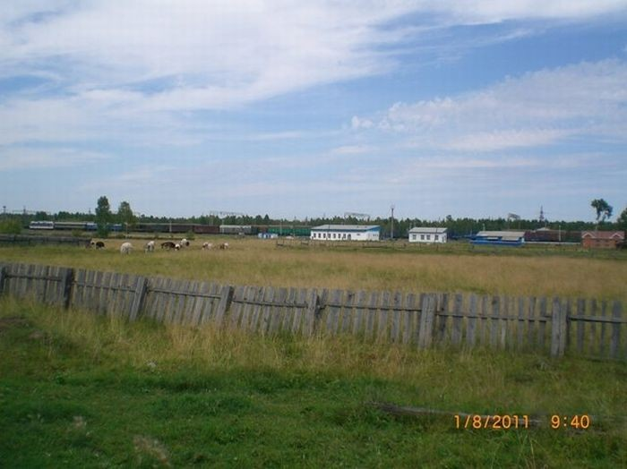 Сельская школа в сибирском поселке (25 фото)