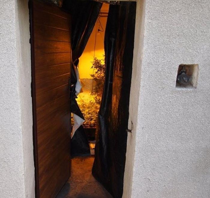 Соседи настучали в полицию (5 фото)