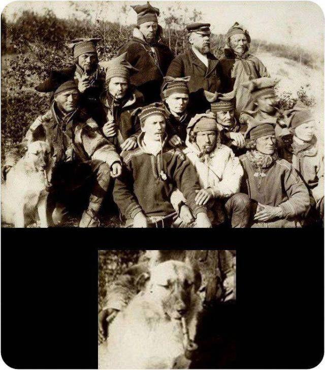 Подборка прикольных фото  (117 фото)