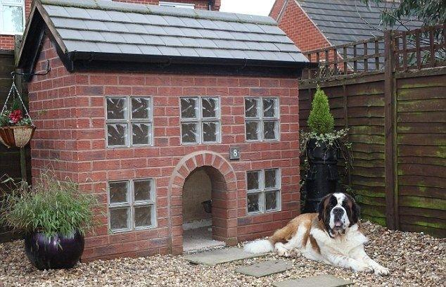 Домик для собаки как для самого себя (10 фото)