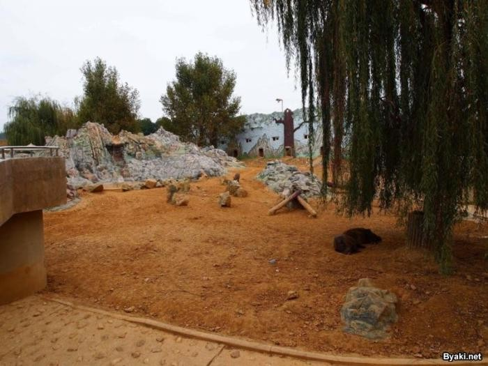 Фотоэкскурсия по главному зоопарку Северной Кореи (22 фото)
