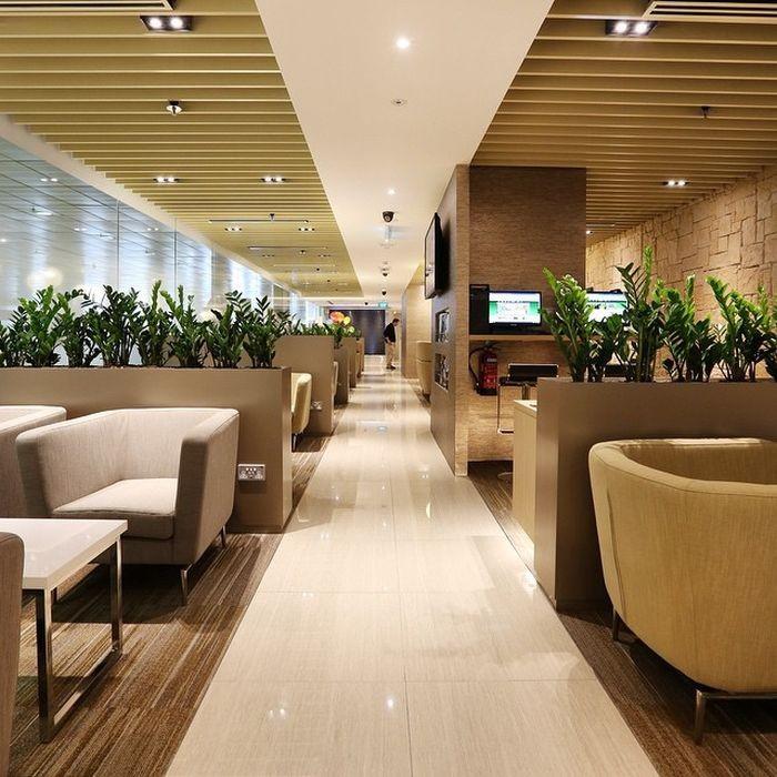 Чанги в Сингапуре - лучший аэропорт в мире (31 фото)