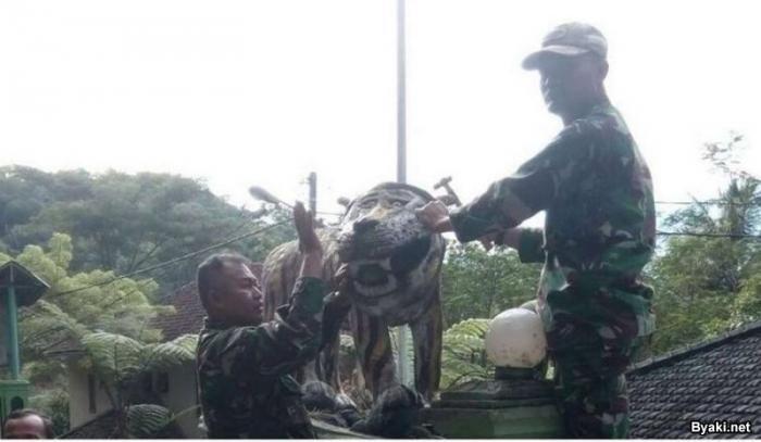 Символ военной базы стал мемом в социальных сетях (8 фото)