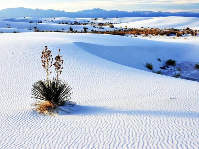 Сказочная красота самых удивительных пустынь (10 фото)