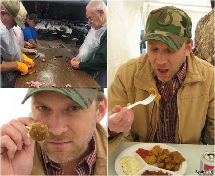Ежегодный фестиваль поедания яичек крупного рогатого скота (10 фото)