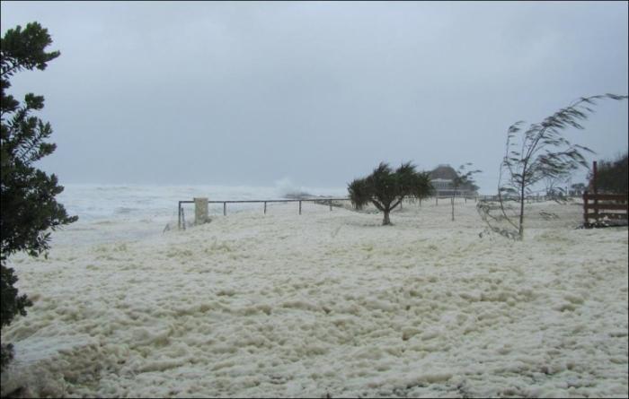 Удивительная морская пена на побережье в Австралии (9 фото)