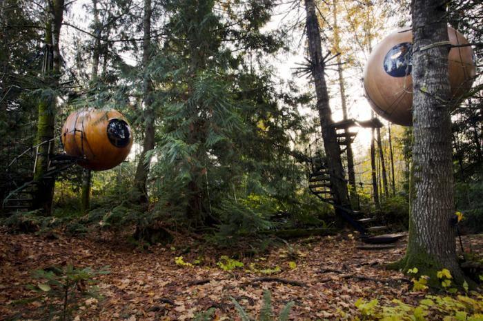 Оригинальный отель в лесу на острове Ванкувер (10 фото)