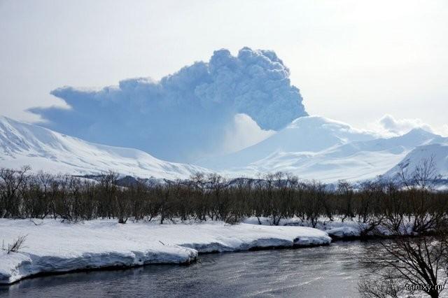 Извержение вулкана Камбальный на Камчатке (5 фото)