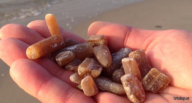 Необычные камни на Балтийском побережье (4 фото)