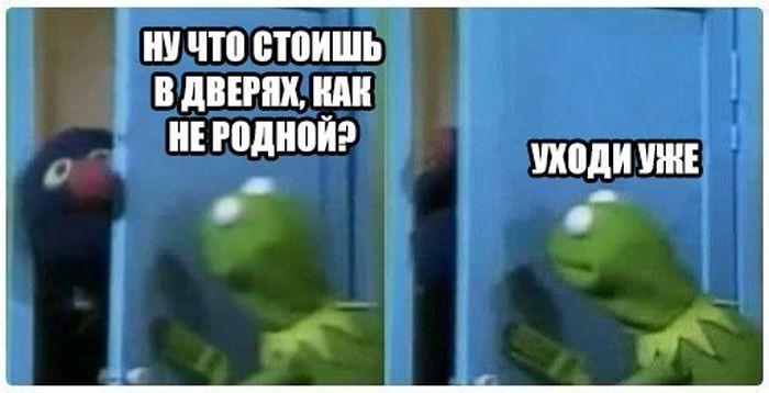 Подборка прикольных фото  (153 фото)