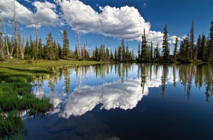 Красота окружающего мира (22 фото)