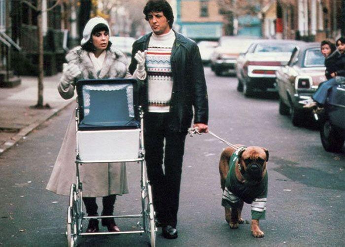 Сильвестр Сталлоне рассказал историю о своей собаке по кличке Буткус (8 фото)